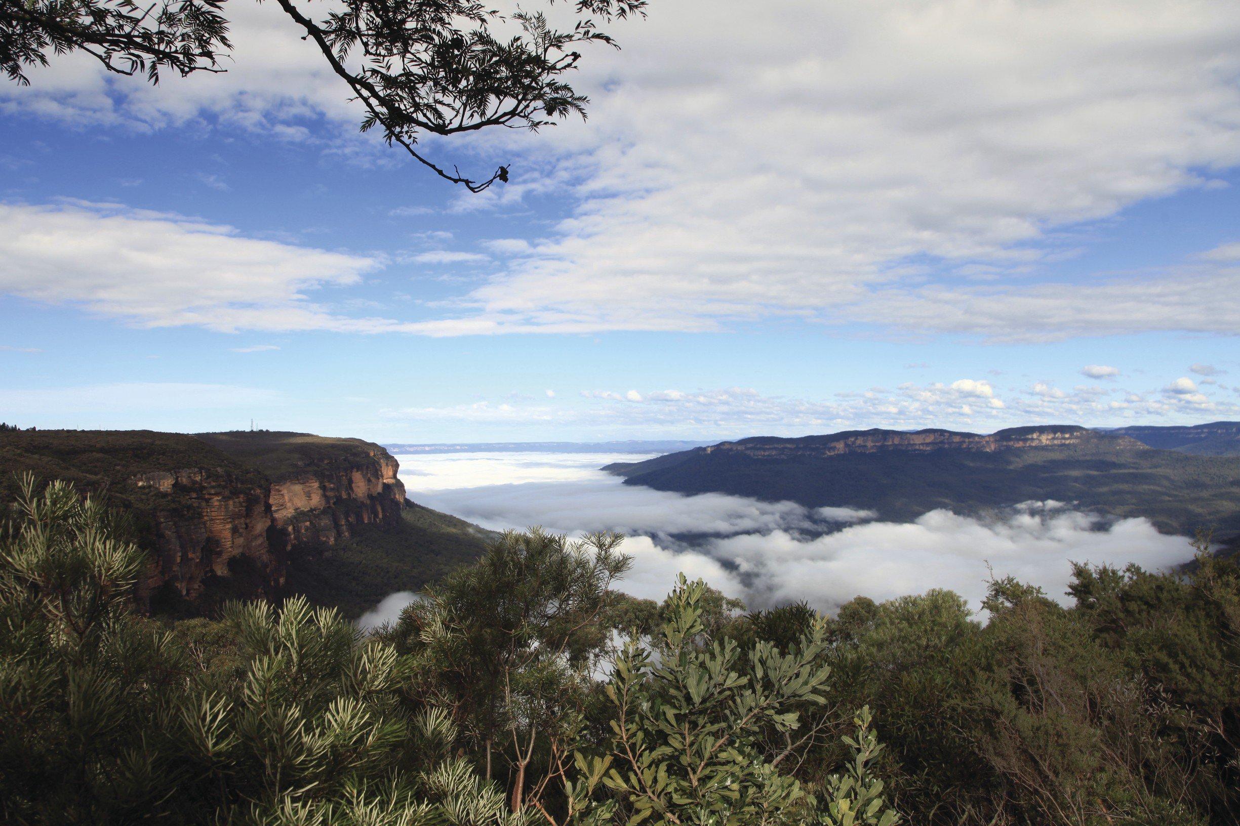 De Blue Mountains uit het boek Australië: een reis door het zuiden van Lisanna Weston namens Dutchies Travel